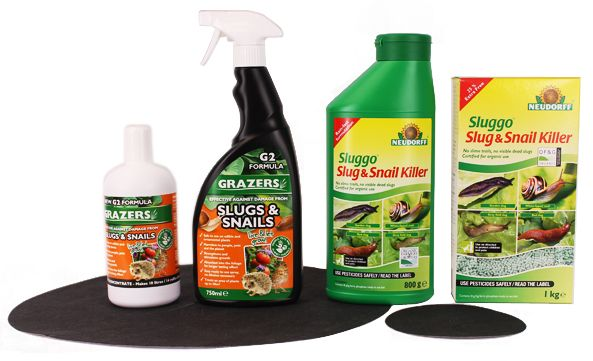 Organic Pest Control Home and Garden Tips - Happy and Healthy Growing