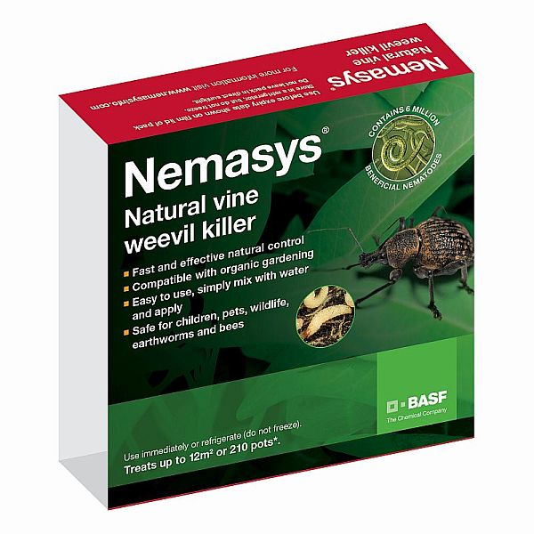 Vine Weevil Organic Pest Control for UK Gardens with Nematode Treatment
