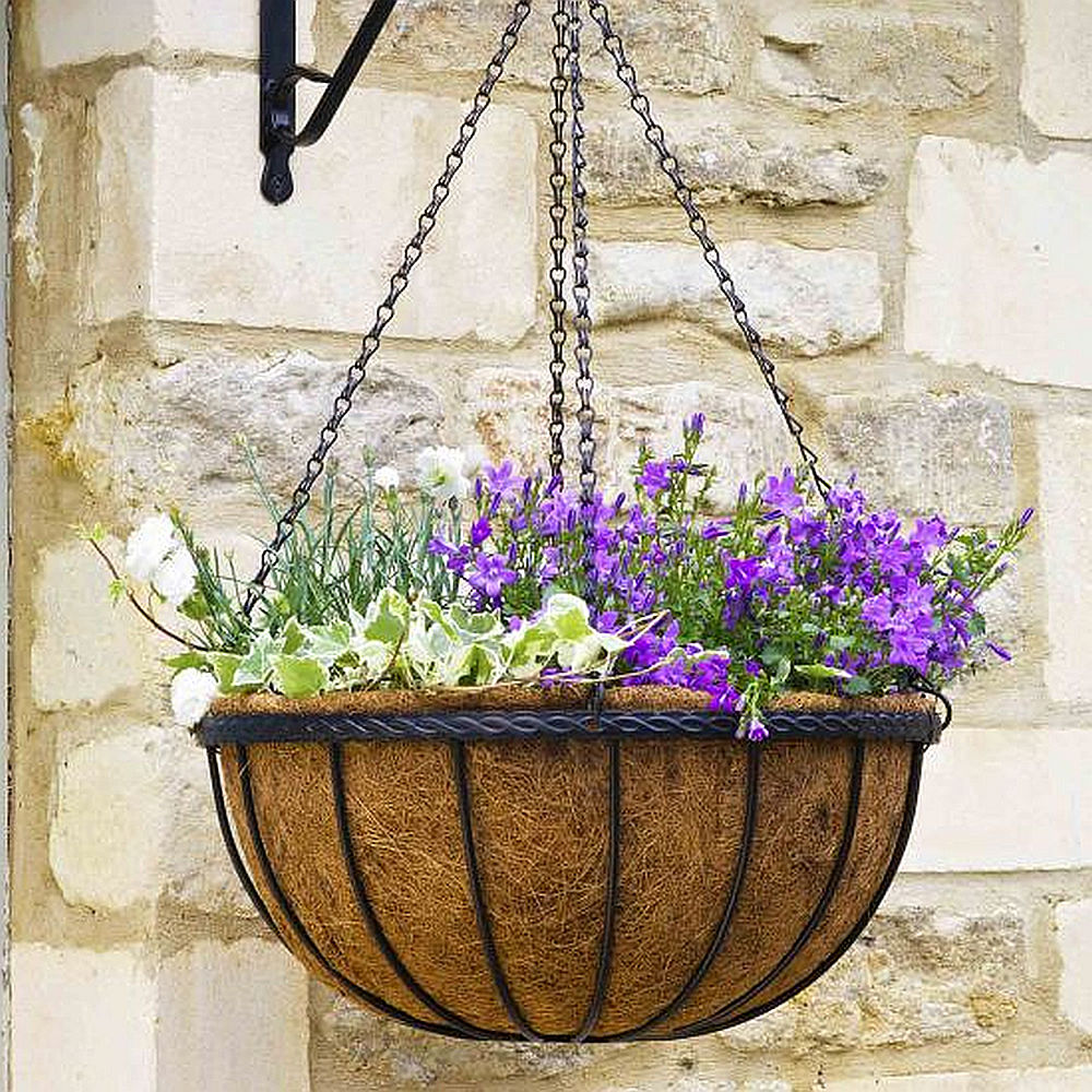 What Is Good To Go In Your Hanging Baskets?