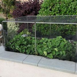 Fruit & Vegetable Cages