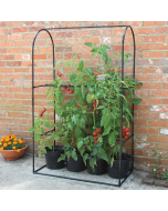 Tomato Crop Booster Frame Or Cover