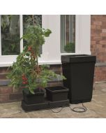 Easy2Grow Kit, Automatic Watering