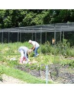 Walk in Fruit and Vegetable Cages