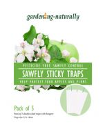 Apple Sawfly Traps Pack of 5