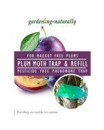 Plum Moth Traps and Refills
