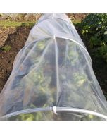 Polythene for Plant Protection