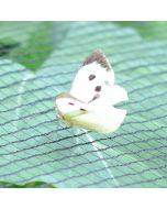 Soft Butterfly and Bird Netting