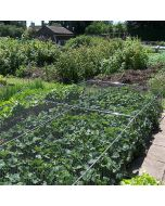 Strawberry Cages, Complete with Netting, Pegs & Clips (700mm/2ft 3in High)