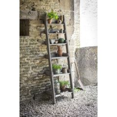 Aldsworth Shelf Ladder - Small