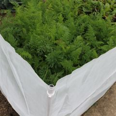 Carrot Fence Netting 1m High