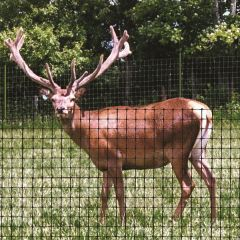 Deer Netting/Fencing