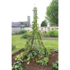 Eiffel Tower Plant Frame