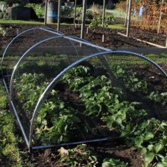 Portable Domed Cage for Fruit and Vegetables