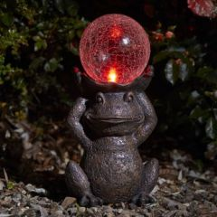 Solar Light - Gazing Frog - Colour Changing