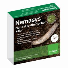 Leatherjacket Nematodes 100 Sqm