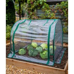 Seedling Cloche with Clear Cover 92cm