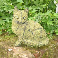 Moss Filled Topiary Cat Sitting Frame