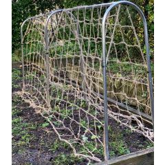 Small Domed Pea and Bean Frame