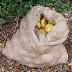 Bagacrop Hessian Potato Sacks 25 or 50kg