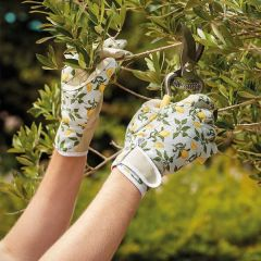 Sicilian Lemon Smart Gloves