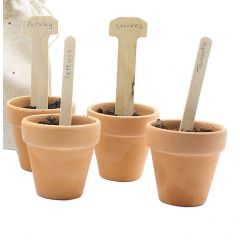 Wooden Plant Labels Pack of 50