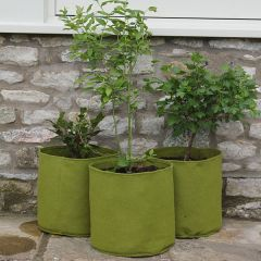 Vigoroot Pots 20L (3 Pack)