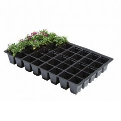 Professional 40 Cell Seed Trays (Pack of 5)