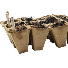 Wooden Plant Pins for Seed Trays (100)