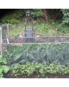 Fruit And Vegetable Cages 900mm High