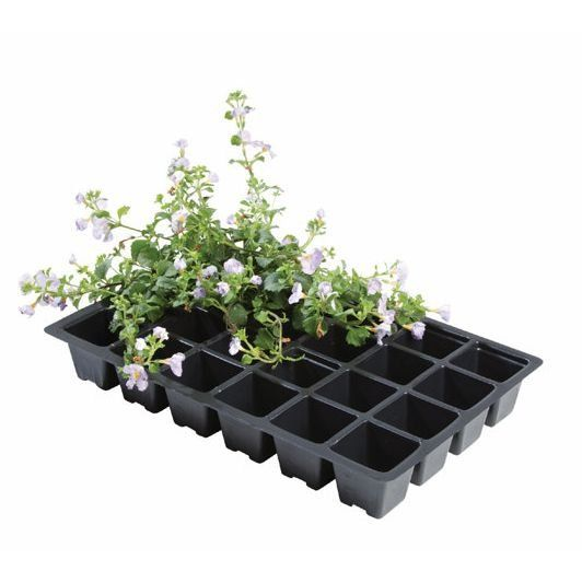 Professional 24 Cell Insert Plant Trays (Pack of 5)