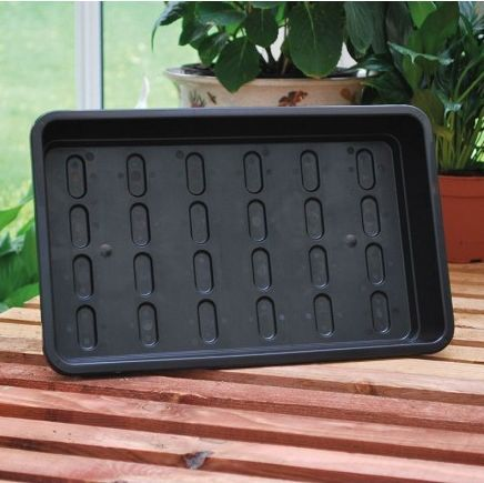 Black Seed Trays & Propagation Lids