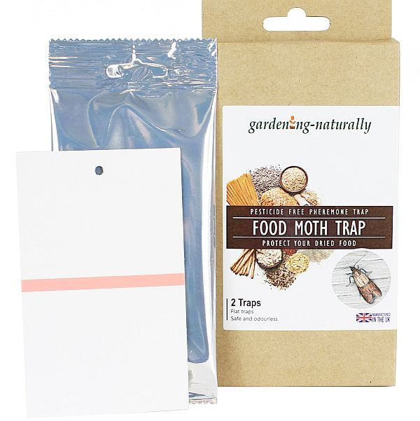 Food Moth (Pantry Moth) Traps