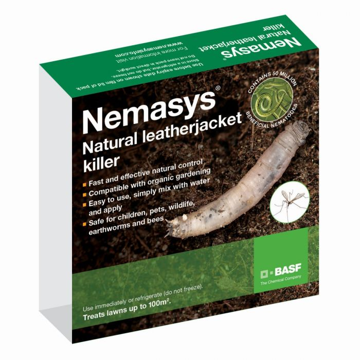 Leatherjacket Nematodes 500 sqm