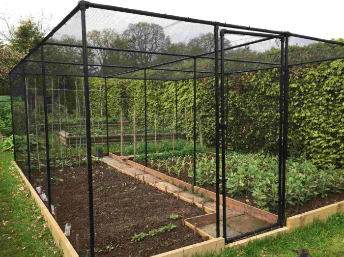 Premium Walk In Fruit and Vegetable Cages