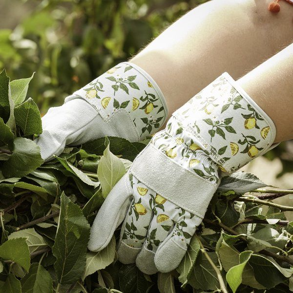 Sicilian Lemon Gardening Rigger Gloves Medium