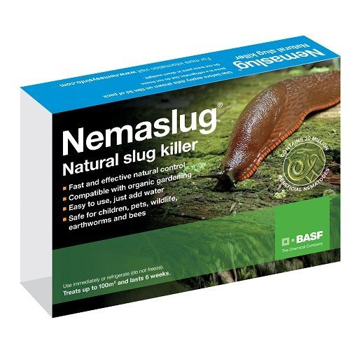 Nemaslug Slug Nematodes (Treats 100 sq.m)