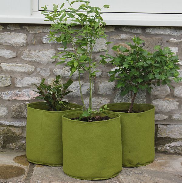 Vigoroot Pots 10L (3 Pack)