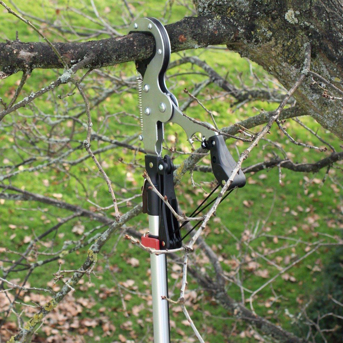 Darlac Swop Top Geared Tree Pruner Head Minimal Effort Geared Pulley